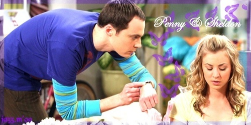 sheldon and penny banner