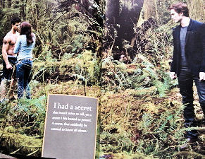 HQ New Moon Mag Scan Photo
