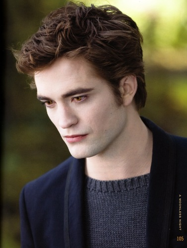 My fave pics of the New Moon Movie Companion