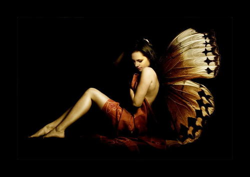Bella - Butterfly... atau maybe a fairy?