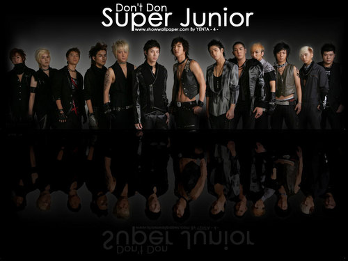 Super Junior's don't don