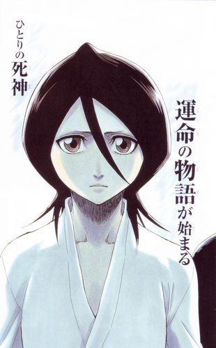 falling in love with rukia